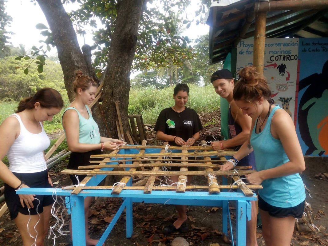 Making turtle nest protectors